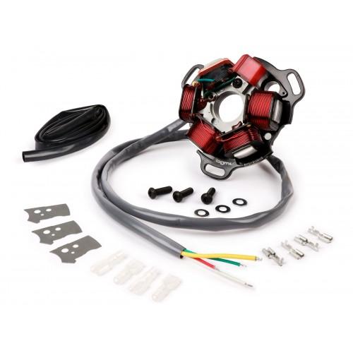 BGM PRO ELECTRONIC 12V STATOR PLATE  V4.5  SILICONE AC