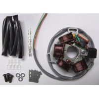 ELECTRONIC 12V STATOR PLATE AC- READSPEED